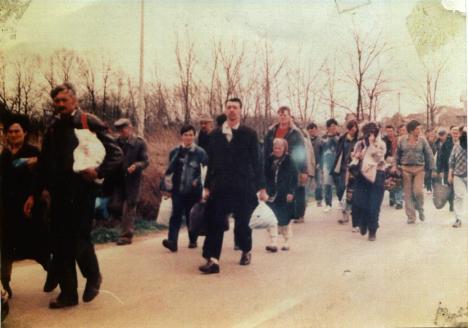 kostres-2002